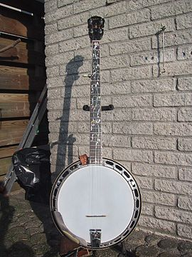 Bluegrass Banjo.jpg