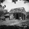 Boršt v Istri hišna št. 57, štalca (hlev), kotec (svinjak) (novo prekrit) in stranišče (pleteno) 1950.jpg