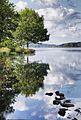 Bord du lac de Vassivière.jpg