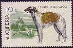 Borzoi Albania stamp.jpg