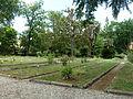 BotanicGardensPisa (2).JPG