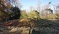 Bowl Barrow Graffham Nature Reserve.jpg