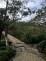 Braeside Trail - panoramio (9).jpg