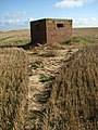 Brick-shuttered pillbox in harvested field - geograph.org.uk - 978619.jpg