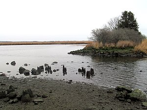 Valley Railroad (Connecticut) - Remains of a wooden bridge along the former Fenwick Branch south of Old Saybrook, which was abandoned in the early 20th century