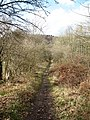 Bridleway below the White Horse - geograph.org.uk - 683023.jpg