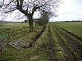 Bridleway east of West Woodside Farm - geograph.org.uk - 1174087.jpg
