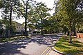 Broad Walk, London N21 - geograph.org.uk - 977085.jpg