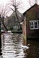 Bruges2014-134.jpg