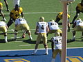 Bruins on offense at UCLA at Cal 2010-10-09 48.JPG