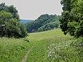 Bubovice-Srbsko - panoramio (129).jpg
