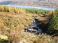 Burn going down to Loch Loyne - geograph.org.uk - 1538018.jpg