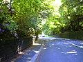 Burnley Road - geograph.org.uk - 1332540.jpg