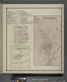 Busti Business Directory; Oak Hill (Village); Oak Hill Business Directory; Busti Corners (Village); Clear Creek (Village) NYPL1583129.tiff