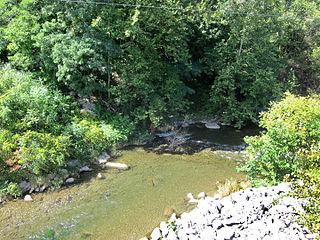Butternut Creek (Limestone Creek tributary)