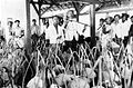 COLLECTIE TROPENMUSEUM Zoutwinning in dessa Djono te Blora Midden-Java. In de weegloods wordt zout gewogen door de mantri TMnr 10007402.jpg