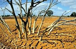 consecuencias de la contaminacion del suelo yahoo dating