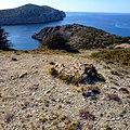 Cabrera Archipelago Maritime-Terrestrial National Park - panoramio (13).jpg