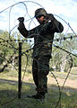 California Seabees prepare for upcoming deployment DVIDS88622.jpg