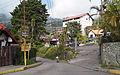 Calles de la Colonia Tovar.jpg