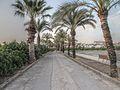 Camí de Sant JOanet - panoramio.jpg