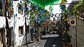 Camara de Lobos plastic recycled to decoration (38043141166).jpg