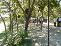 Campus of Bhawal Badre Alam Govt. College.jpg