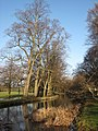 Canal in Bute Park, Cardiff - geograph.org.uk - 1130926.jpg