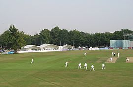 Canterbury Cricket.JPG