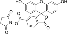 Carboxyfluorescein succinimidyl ester.png