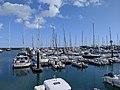Cascais Marina (49663278856).jpg
