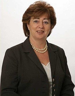 Catherine Murphy politician frameless photo.jpg