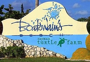 Cayman Turtle Farm sign.jpg