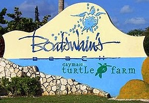 Cayman Turtle Farm - Image: Cayman Turtle Farm sign
