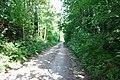 Ceļš - panoramio - Manshtein.jpg