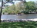 Cedar river.jpg