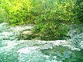 Cenote de Sierra Papacal, Yucatán (06).JPG
