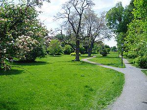 Central Park (Ottawa) - Wikipedia