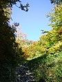 Cesta po kameňoch jarku - panoramio.jpg