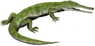 Prolacerta - Image: Champsosaurus BW flipped