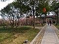Changshu, Suzhou, Jiangsu, China - panoramio (302).jpg