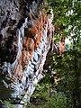 Chapada Diamantina, Brazil - panoramio.jpg