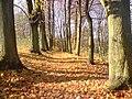 Chełmno, Poland - panoramio (240).jpg