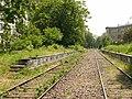 Chemin de fer de Petite Ceinture - platforms.jpg