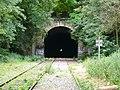 Chemin de fer de Petite Ceinture - tunnel 5.jpg