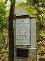 Chenstochov ------- Jewish Cemetery of Czestochowa ------- 59.JPG