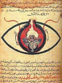 8037a1fa8 الطب والصيدلة في عصر الحضارة الإسلامية - ويكيبيديا، الموسوعة الحرة