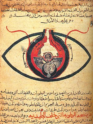 Hunayn ibn Ishaq - The eye according to Hunain ibn Ishaq. From a manuscript dated circa 1200.