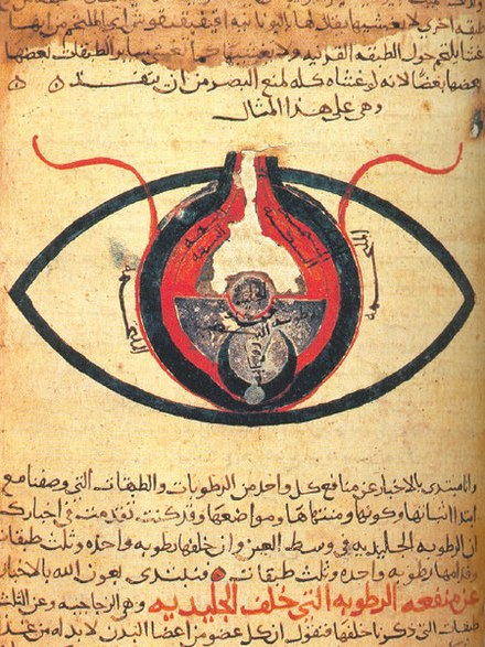The eye, according to Hunain ibn Ishaq from a manuscript dated circa 1200 Cheshm manuscript.jpg