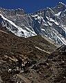 Chhukung-316-Nuptse-Lhotse-2007-gje.jpg